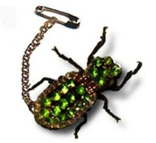 Mexican Maquech Beetle Brooches History